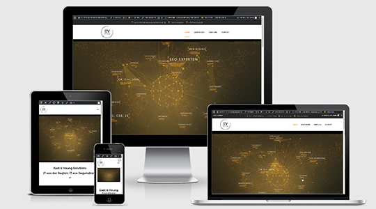 Webdesign, Website Homepage - East & Young Solutions,in, Regensburg, Nürnberg